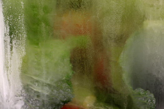 ALZ-112, 2015, Installation d'enrichissement animaliers. Objets de récupération, chaines et cordages. Glaçons, fruits, légumes et viande. Exposition IGITUR, Université de Lettres du Mirail Jean Jaurès.