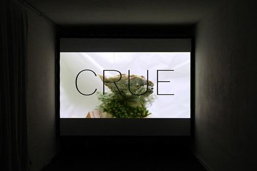 CRUE, 2017,  Rémi Groussin et Laurie Charles. Vidéo HD, couleur et son, 35'00''. Exposition CRUE, Glassbox, 11e à Paris