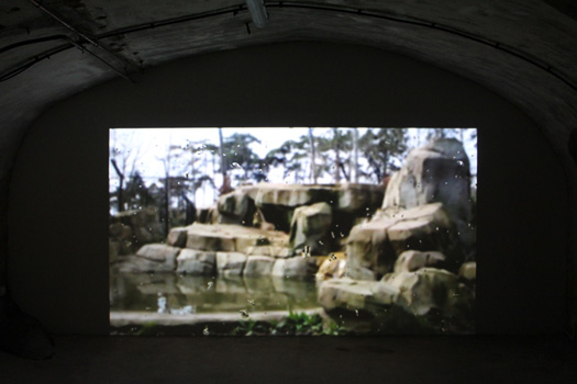 DELUGE (1933) 2016, projection vidéo HD, couleur, muet, 11 min (en boucle). Dans le cadre de l'exposition personnelle Slide Like An Egytian à l'Appartement / Galerie Interface, Dijon.